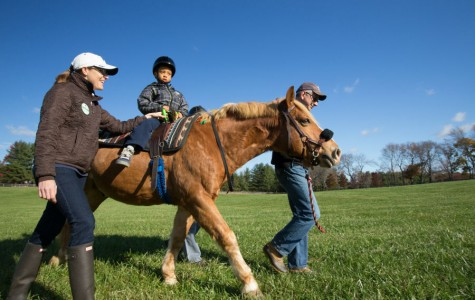 Hippotherapy provides variety of physical, emotional benefits
