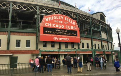 5 things you didn't know about the Cubs and The World Series