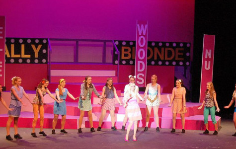 'Omigod You Guys' Legally Blonde was, like, a sensation!